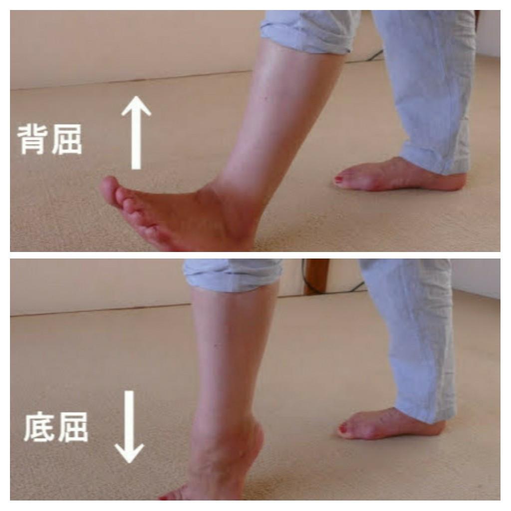 痛み 膝 腓腹筋 の 裏